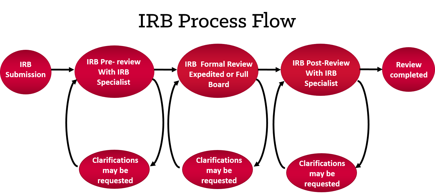 IRB Process Flow
