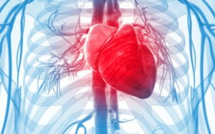 Coronary and Peripheral Artery Disease