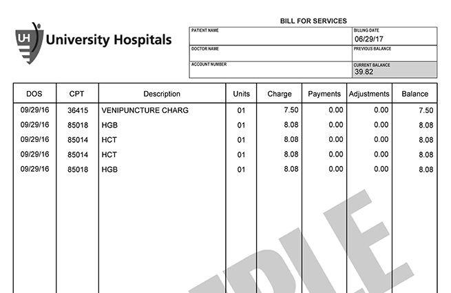 Image of a lab Bill