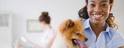Pet Therapy at UH Elyria | University Hospitals Elyria